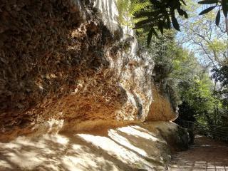 Ste Croix du Mont - La falaise d'huîtres fossiles