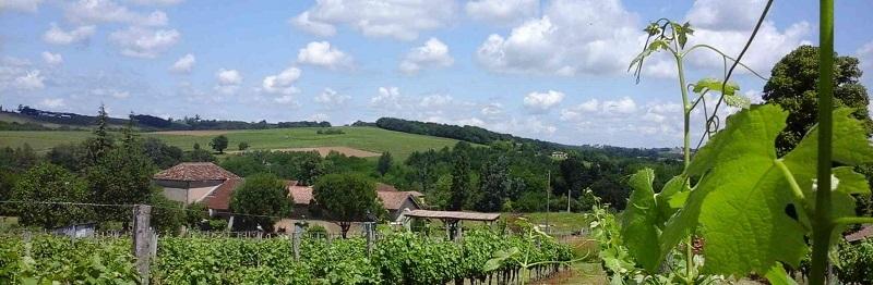 Le Domaine de Gingeau